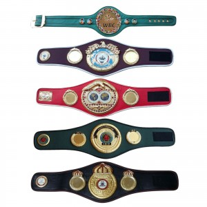 WBC WBA WBO IBF IBO Championships Boxing Belt Mini 5 Belts set